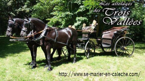 partenaire mariage en calèche Lille